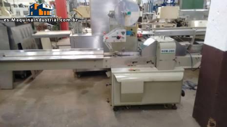 Paquete de flujo de envases alimentos Nanyang modelo DBZ-280